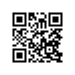 Scan our Site Mobile Examples